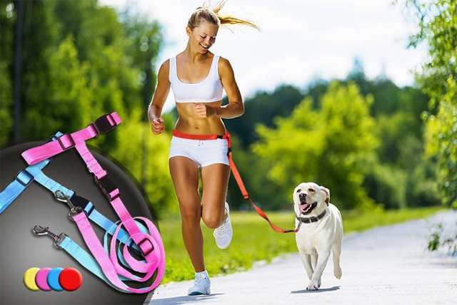 Valid in a choice of blue, pink, red and yellow, this hands-free dog lead makes taking your pooch for his walkies a whole lot easier